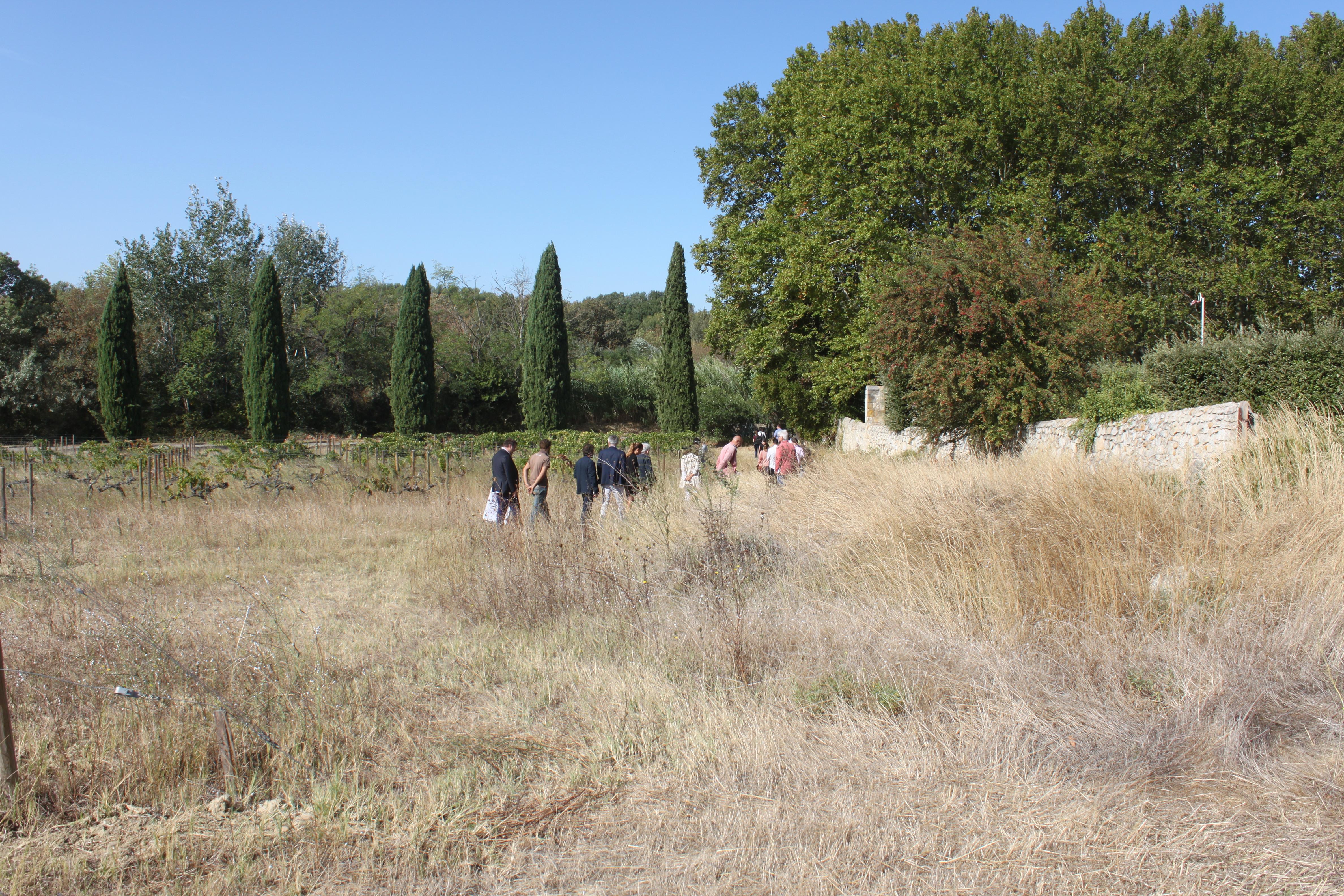 transition écologique paysage cleantech vallée
